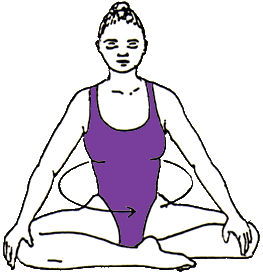 lesson 9  flexibility of the spine